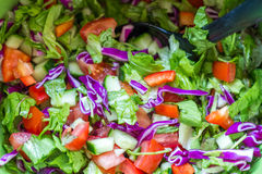 Salada saudável com tomates, pepino, espinafres e couve Imagens de Stock Royalty Free