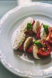 Salada saudável de Caprese Foto de Stock