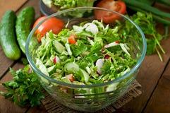 Salada saudável dietética de legumes frescos Imagem de Stock Royalty Free