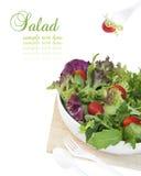 Salada saudável do jardim na bacia branca à moda Fotografia de Stock Royalty Free