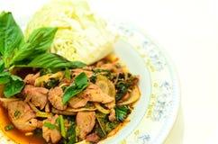 Salada tailandesa da carne de porco imagem de stock