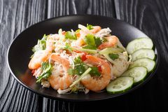 Salada tailandesa de Yum Woon Sen da receita com camarão, carne de porco e close up dos vegetais em uma placa horizontal imagem de stock