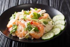 Salada tailandesa deliciosa Yum Woon Sen com marisco e close-up dos vegetais em uma placa horizontal fotos de stock royalty free
