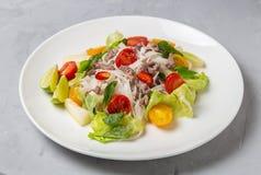 Salada tailandesa picante com os macarronetes da carne picada e de arroz SENSOR DE YAM WOON fotografia de stock