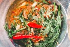 Salada triturada picante da carne com erva Imagem de Stock