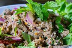 Salada triturada picante da carne de porco Imagens de Stock Royalty Free