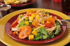 Salada tropical colorida Foto de Stock