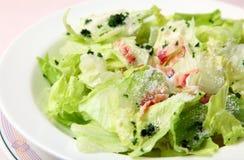 Salada vegetal Imagens de Stock Royalty Free