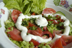 Salada vegetal Fotos de Stock
