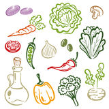 Salada, vegetal ilustração royalty free