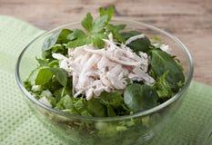 Salada vegetal com carne da galinha Imagem de Stock