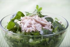 Salada vegetal com carne da galinha Foto de Stock
