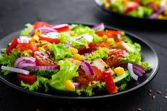 Salada vegetal com carne da galinha Salada com peito de frango e os vegetais crus foto de stock