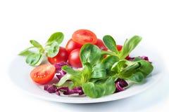 Salada vegetal isolada imagem de stock royalty free