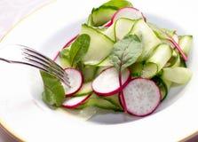 Salada vegetal com pepinos e rabanete Imagens de Stock
