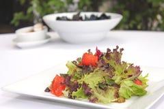 Salada vegetal com salmão fumado Imagens de Stock