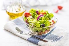 Salada vegetal da mola com queijo e azeitonas da cebola dos tomates imagem de stock
