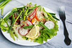 Salada vegetal da mola na placa branca vegan Fotos de Stock Royalty Free