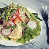 Salada vegetal da mola na placa branca vegan Foto de Stock Royalty Free