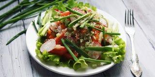 Salada vegetal da mola na placa branca vegan Fotos de Stock