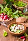 Salada vegetal da mola quaresmal do pepino, rabanete, verdes fotos de stock royalty free
