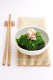 Salada vegetal do fern fotografia de stock royalty free