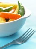 Salada vegetal misturada Foto de Stock Royalty Free