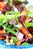 Salada vegetal misturada fotografia de stock
