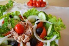 Salada vegetal misturada com atum e azeite Imagem de Stock