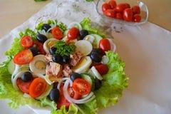 Salada vegetal misturada com atum e azeite Fotografia de Stock