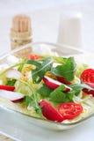 Salada vegetal saudável Fotos de Stock Royalty Free