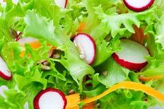 Salada verde Imagens de Stock Royalty Free