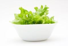 Salada verde. Imagem de Stock