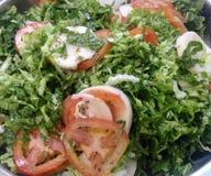 Salada verde _1 Foto de Stock Royalty Free