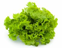 Salada verde fotografia de stock royalty free