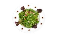Salada verde com galinha imagem de stock
