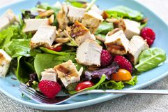 Salada verde com galinha grelhada imagem de stock