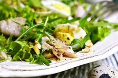 Salada verde com galinha, maçã e ovos Imagens de Stock