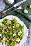 Salada verde com galinha, maçã e ovos Fotos de Stock