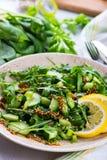 Salada verde com o sau das cebolas, do aipo, do ruccola, dos espinafres e da mostarda Foto de Stock