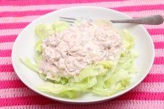 Salada verde com peixes de atum Foto de Stock Royalty Free
