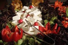 Salada verde com queijo fotografia de stock