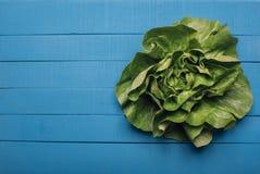 salada verde da alface fotografia de stock royalty free