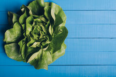 salada verde da alface imagem de stock