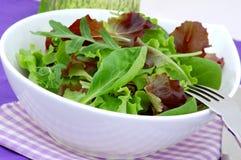 Salada verde da dieta com alface, arugula e espinafre imagem de stock
