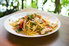 Salada verde da manga em Tailândia Fotografia de Stock