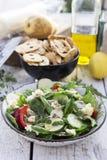 Salada verde da mola Fotografia de Stock Royalty Free