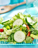 Salada verde do jardim do pepino imagens de stock