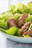 Salada verde e faixa grelhada de beef.JPG Fotografia de Stock