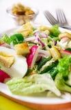 Salada verde fresca Fotografia de Stock Royalty Free